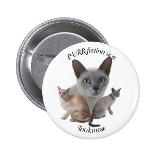 PURR-fection Tonkinese 6 Cm Round Badge
