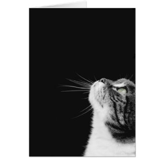 Purrfect Greeting Card