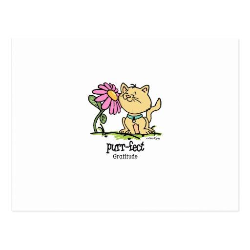 Purrfect Gratitude - cat Post Cards