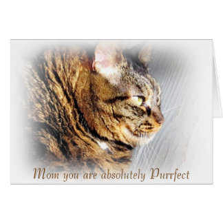Purrfect Mother's Day Tabby Cat Greeting Card