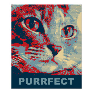 Purrfect Poster