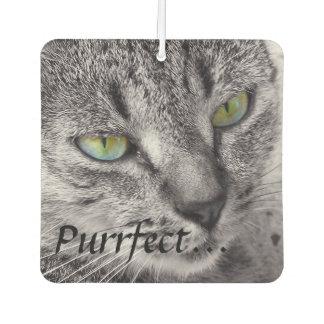 Purrfect tabby cat car air freshener