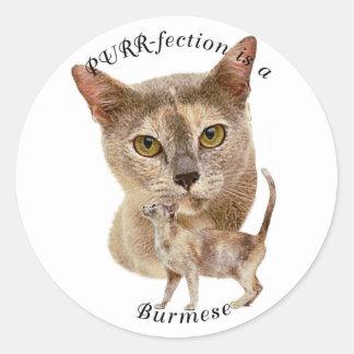 PURRfection Burmese Blue Tortie Round Sticker