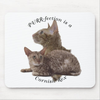PURRfection Cornish Rex red Mouse Pad