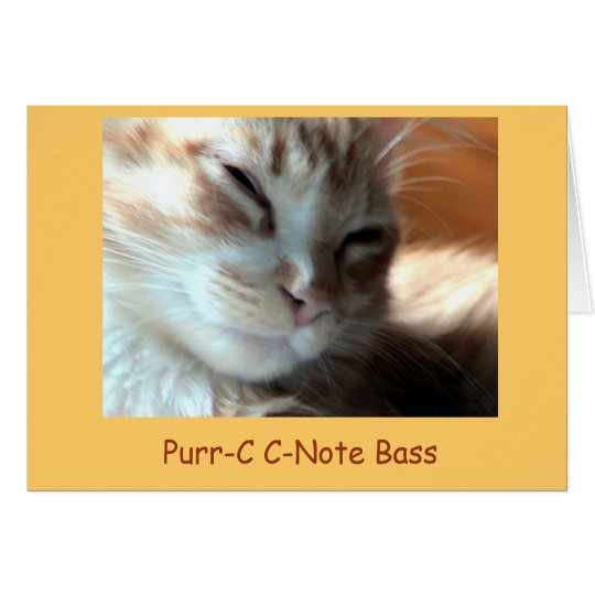 Purrfectly Purr-C, Purr-C C-Note Bass - Customised Card