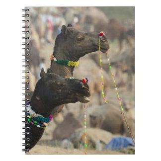 Pushkar Camel Fair, Pushkar, Rajasthan, India Spiral Notebook