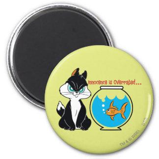 Pussyfoot Grumpy Kitty 6 Cm Round Magnet