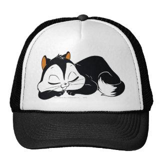 Pussyfoot Sleepy Kitty Cap