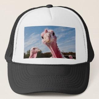 Put my head where? trucker hat