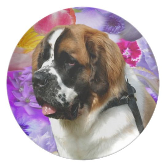 Put My Pet In The Garden Plate