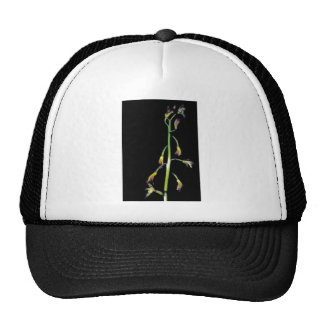 Putty root mesh hat