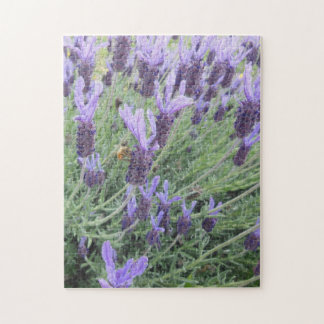 Puzzle: Bee on French Lavender Puzzles