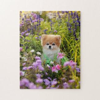 Puzzle - Bella Pomeranian Secret Garden