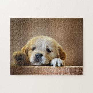 Puzzle - Cute Puppy