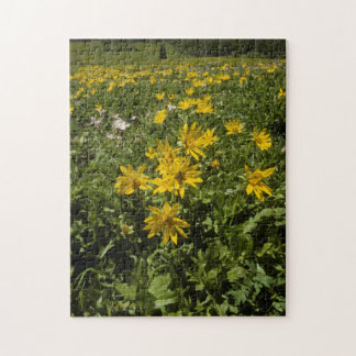 Puzzle, Field of Arrowleaf Balsamroot Jigsaw Puzzle