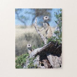 Puzzle - Meerkat Sentinels