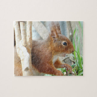 PUZZLE Squirrel ~ squirrels ~ by GLINEUR