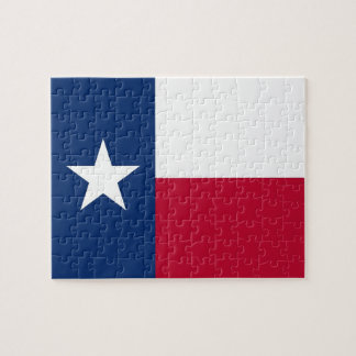 Puzzle with Flag of Texas State