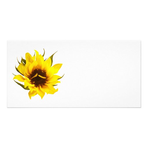 Puzzled Sunflower Photo Greeting Card