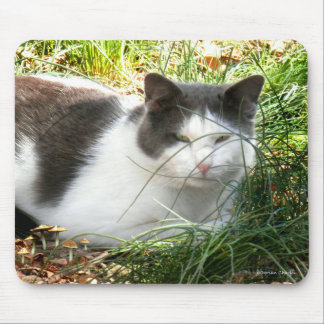 """Pye With Mushrooms"" Mousepad"