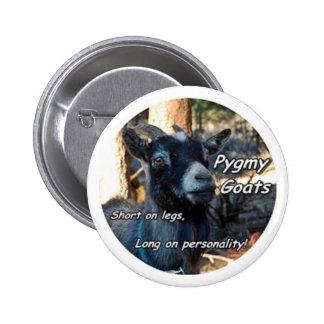 Pygmy Goat Buttons