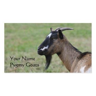 Pygmy goat farm business card