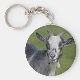 Pygmy Goat Keyring Basic Round Button Key Ring