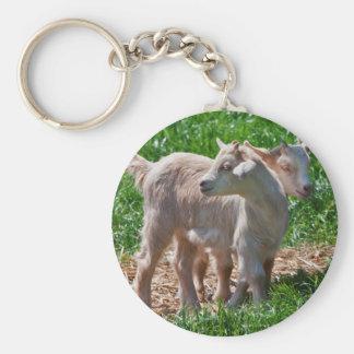 Pygmy Goat Kids Keyring Basic Round Button Key Ring