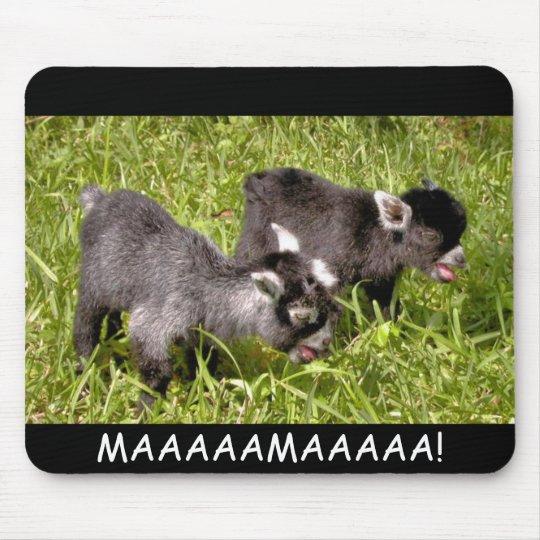 Pygmy goat kids. MAAAAAMAAAAA! mouse pad