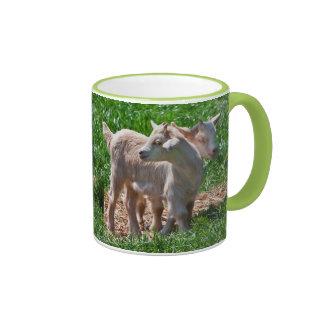 Pygmy Goat Kids Mug