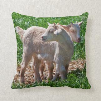 Pygmy Goat Kids Pillow