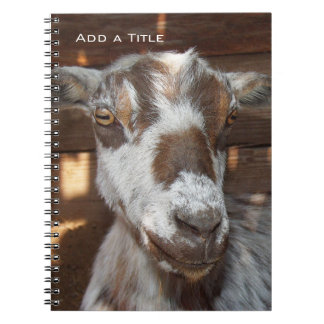 Pygmy Goat Notebook