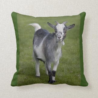 Pygmy Goat Pillow