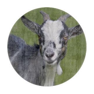 Pygmy Goat Round Cutting Board