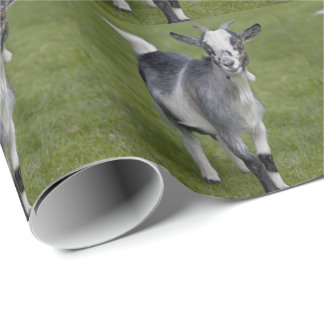 Pygmy Goat Wrapping Paper