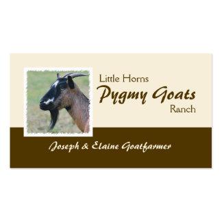 Pygmy goats business card