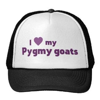 Pygmy goats cap