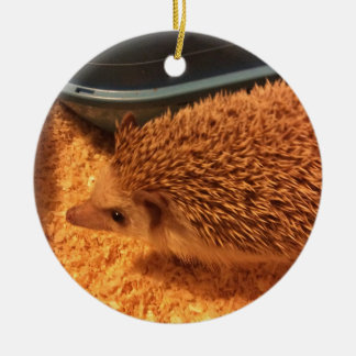 Pygmy  Hedgehog Christmas Ornament