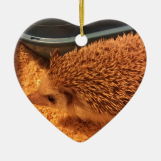 Pygmy  Hedgehog Christmas Ornament