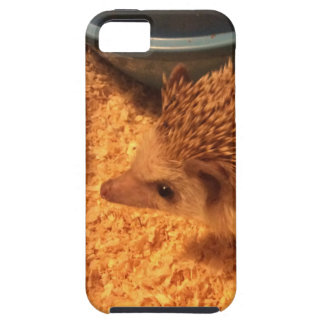 Pygmy  Hedgehog iPhone 5 Cover