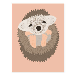 Pygmy Hedgehog is SO Cute! Postcard