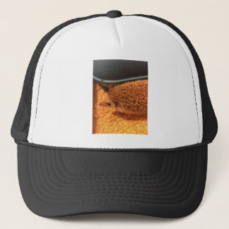 Pygmy  Hedgehog Trucker Hat