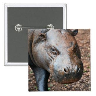 Pygmy Hippo 15 Cm Square Badge