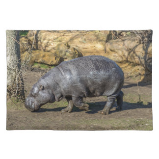 Pygmy hippo at the zoo placemat