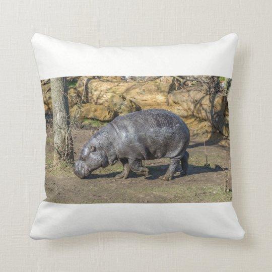 Pygmy hippo at the zoo throw cushion