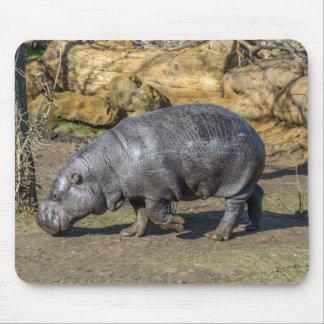 Pygmy hippo mousepad