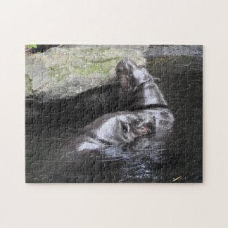 Pygmy Hippo Puzzle