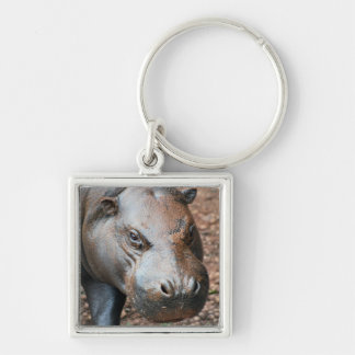 Pygmy Hippo Silver-Colored Square Key Ring