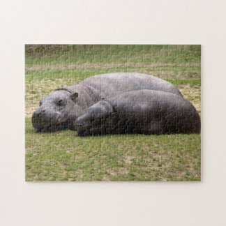 Pygmy hippos puzzles
