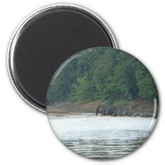 Pygmy Paddle Fridge Magnet
